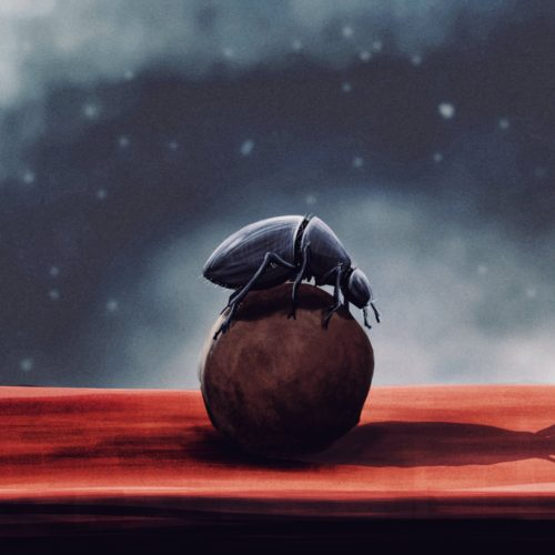 digital painting time lapse of a beetle